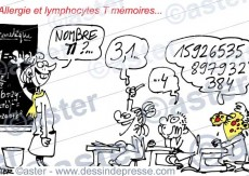 Lymphocytes T mémoire